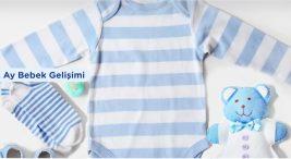 1. Ay Bebek Gelişimi